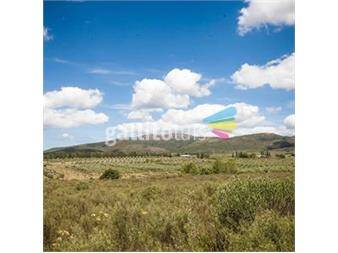 http://www.gallito.com.uy/piedras-de-las-animas-chacras-en-la-sierra-de-las-animas-inmuebles-12512739