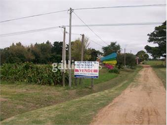 http://www.gallito.com.uy/campo-con-mejoras-excelente-ubicacion-inmuebles-12568199
