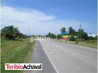 http://www.gallito.com.uy/amplio-terreno-sobre-principal-de-nueva-helvecia-inmuebles-12646362