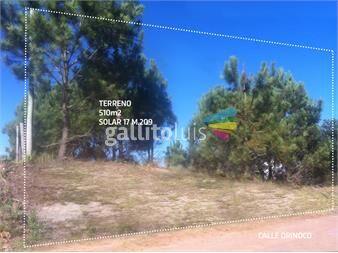 http://www.gallito.com.uy/terreno-a-4-cuadras-de-la-viuda-en-punta-del-diablo-inmuebles-12759540