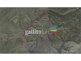 http://www.gallito.com.uy/campo-apto-ganaderia-y-forestacion-inmuebles-12767481