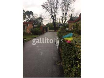 http://www.gallito.com.uy/agradable-casa-en-ccosur-inmuebles-12857497