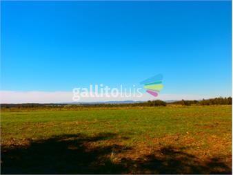http://www.gallito.com.uy/inmobiliaria-gorga-lider-en-negocios-inmobiliarios-inmuebles-12859255