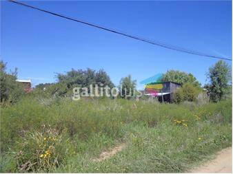 http://www.gallito.com.uy/lote-500-m²-la-pedredra-rocha-inmuebles-12888139