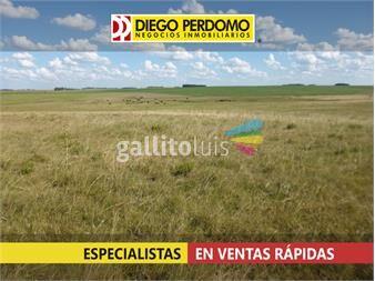http://www.gallito.com.uy/416-ha-agri-gan-inmuebles-12897055