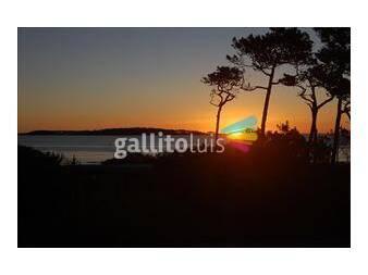 http://www.gallito.com.uy/frente-al-mar-parada-12-mansa-2-d-2-b-cochera-aa-vigilanci-inmuebles-12919257