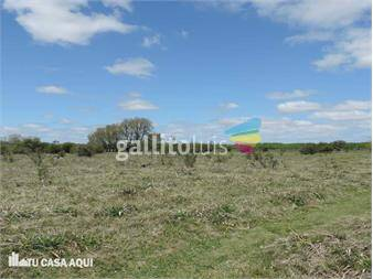 http://www.gallito.com.uy/sobre-ruta-8-km-33-22-has-inmuebles-13090514