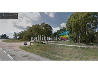 http://www.gallito.com.uy/vendo-terrenos-en-la-esmeralda-inmuebles-12289180