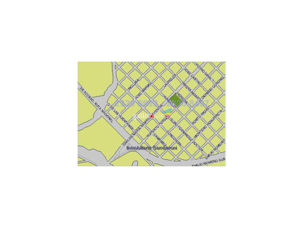 20064038.jpg