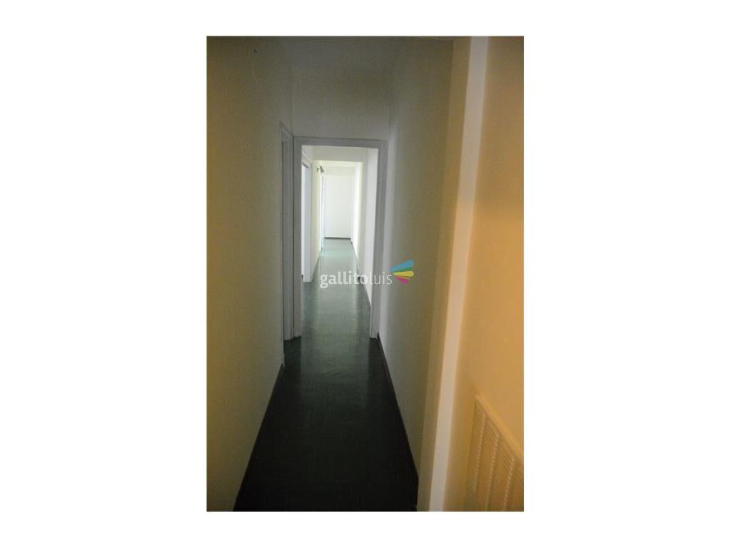 29687641.jpg