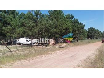 https://www.gallito.com.uy/terrenos-completamente-financiados-cuotas-bajas-inmuebles-7750697