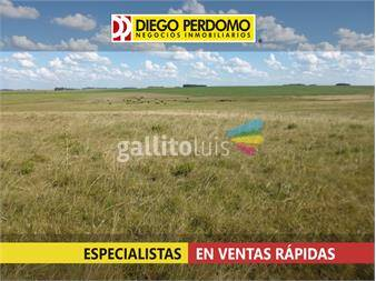https://www.gallito.com.uy/416-ha-agri-gan-inmuebles-12897055