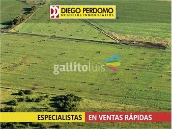 https://www.gallito.com.uy/chacra-en-venta-6-has-colonia-italia-inmuebles-13129127