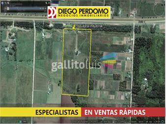 https://www.gallito.com.uy/industrial-uso-inmediato-opcion-unica-inmuebles-13172760