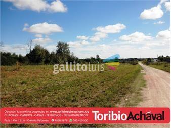 https://www.gallito.com.uy/amplios-terrenos-frente-a-hotel-nirvana-nueva-helvecia-inmuebles-12655071