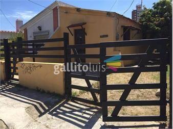 https://www.gallito.com.uy/casa-en-la-paloma-inmuebles-13222915