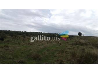 https://www.gallito.com.uy/campo-en-sierra-de-minas-inmuebles-13321752