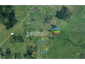 https://www.gallito.com.uy/chacra-en-lavalleja-zona-illescas-inmuebles-13339884