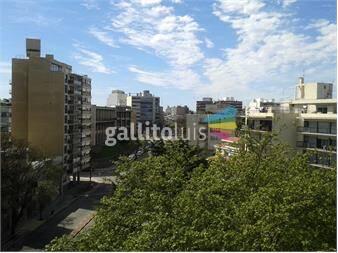 https://www.gallito.com.uy/ideal-para-invertir-o-vivir-edificio-nuevo-piso-alto-inmuebles-13408396
