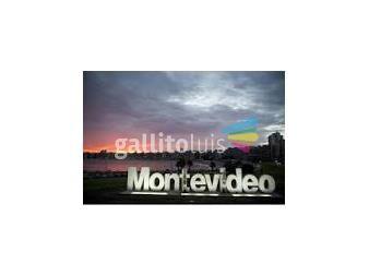 https://www.gallito.com.uy/operador-inmobiliario–tasador–rematador-m5705-cel-099379660-servicios-13485051