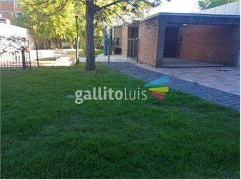 https://www.gallito.com.uy/lo-mejor-de-malvin-inmuebles-13554326