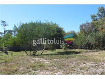 https://www.gallito.com.uy/hermosos-terreno-en-la-juanita-jose-ignacio-inmuebles-13617030