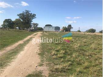 https://www.gallito.com.uy/cardona-680-has-importante-establecimiento-–-350-has-agrico-inmuebles-13722001