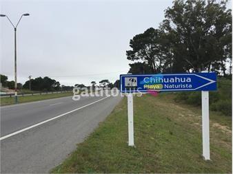 https://www.gallito.com.uy/terreno-en-venta-en-chihuahua-lote-1-inmuebles-14267098