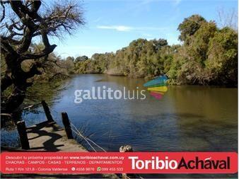 https://www.gallito.com.uy/excelente-con-2700-metros-de-costa-al-rio-rosario-inmuebles-14455770