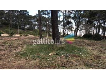 https://www.gallito.com.uy/vendo-terreno-apto-propiedad-horizontal-financia-inmuebles-14693172