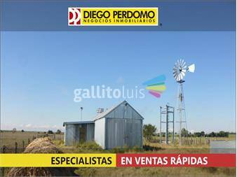https://www.gallito.com.uy/campo-de-54-has-en-venta-san-jose-inmuebles-14859142