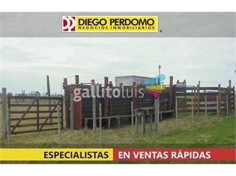 https://www.gallito.com.uy/campo-de-255-has-en-venta-san-jose-inmuebles-14859223