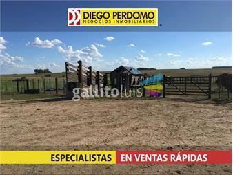 https://www.gallito.com.uy/campo-de-416-has-en-venta-flores-inmuebles-14859446