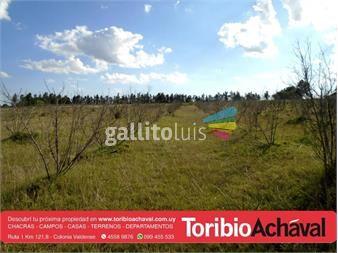 https://www.gallito.com.uy/hermosas-chacras-de-6-has-pegado-a-planta-urbana-valdense-inmuebles-14891184