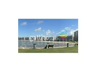 https://www.gallito.com.uy/operador-inmobiliario–tasador–rematador-m5705-cel-099379660-servicios-13494644