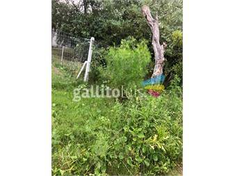 https://www.gallito.com.uy/terreno-en-venta-inmuebles-15126233