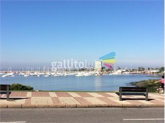 https://www.gallito.com.uy/impecable-monoambiente-en-puerto-de-buceo-inmuebles-15130395