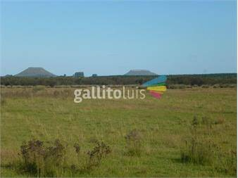 https://www.gallito.com.uy/campo-ganadero-en-venta-don-horacio-ref-6521-inmuebles-15204469