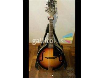 https://www.gallito.com.uy/mandolin-stagg-m-20-productos-16320837