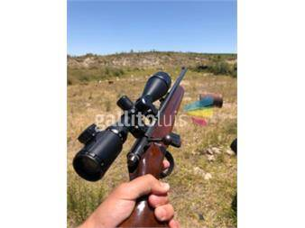 https://www.gallito.com.uy/rifle-cbc-122-productos-17275790