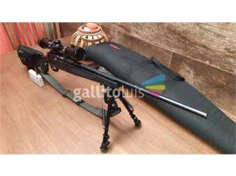 https://www.gallito.com.uy/vendo-rifle-marlin-223-productos-18319892