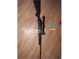 https://www.gallito.com.uy/rifle-223ruger-americano-productos-18495373