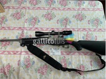 https://www.gallito.com.uy/rifle-ruger-mini-14-inox-calibre-223-sin-mira-productos-18550892