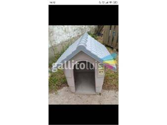https://www.gallito.com.uy/cucha-para-perros-de-tamaño-mediano-productos-18619087