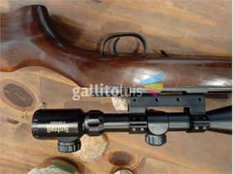 https://www.gallito.com.uy/rifle-cbc-22-lr-productos-18743652