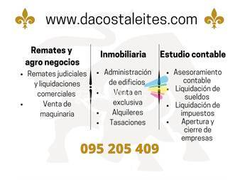 https://www.gallito.com.uy/estudio-contable-servicios-18902495