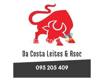 https://www.gallito.com.uy/estudio-contable-servicios-18949046
