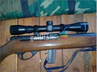 https://www.gallito.com.uy/rifle-22-productos-19004458