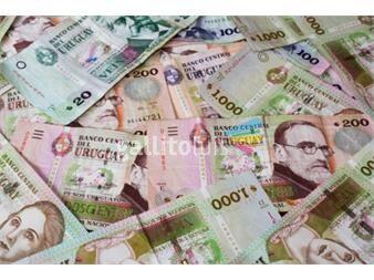 https://www.gallito.com.uy/oportunidad-prestamistas-de-dinero-particulares-en-uruguay-servicios-19023979