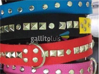 https://www.gallito.com.uy/collares-con-apliques-exelente-calidad-y-productos-19093926